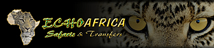 Echo Africa Safaris and Transfers