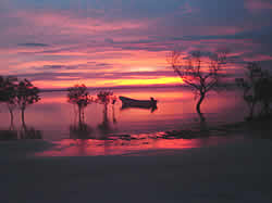 Pemba Accommodation - Pemba Self Catering - Pemba Dive and bush camp - Mozambique Dive camps - Mozambique Diving