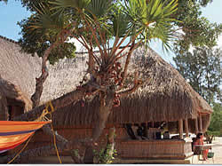 Paradise Beach Lodge  for self catering accommodation in Pemba