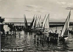 Dhows in Inhambane Harbour Mozambique